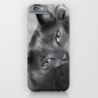 Finlay iPhone 6 Slim Case