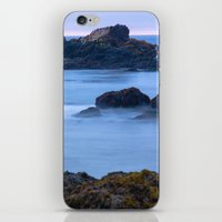 Pescadero Marsh Preserve iPhone & iPod Skin