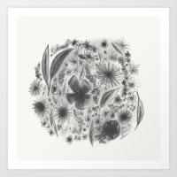 Floral Charcoal Sketch Art Print
