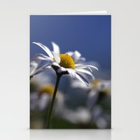Daisies 3610 Stationery Cards