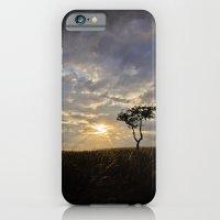 Phoenix Sunset iPhone 6 Slim Case