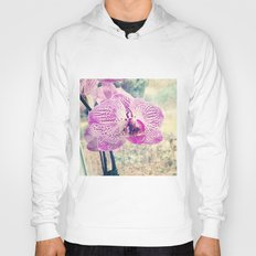 Faded Colors Of Glory Hoody