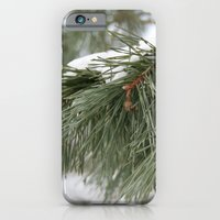 Winter Pine iPhone 6 Slim Case