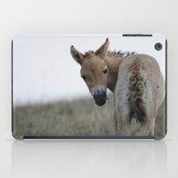 Baby Przewalski's Horse iPad Case