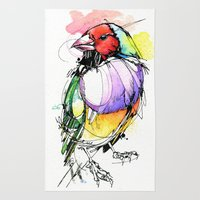 Red Lady Gouldian Finch Rug