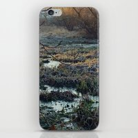 Is This What We've Seen … iPhone & iPod Skin