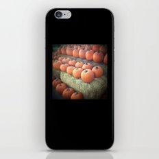 Pumpkins On Display iPhone & iPod Skin