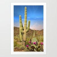 Saguaro Cactus Landscape in Arizona Desert Art Print