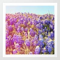 Bluebonnets! Art Print