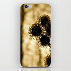 I Seem To Be Mistaken iPhone & iPod Skin