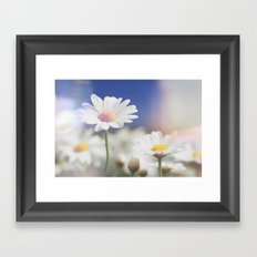Meadow Of Daisies  Framed Art Print