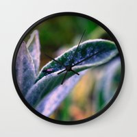 Fly On Stachys Leaf Phot… Wall Clock