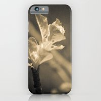 iPhone & iPod Case featuring Trace of Spring by pASob