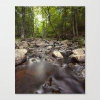 a stream Canvas Print