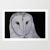 Barn Owl Pencil Art Print