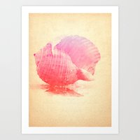 Pink Seashell Art Print