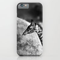 iPhone & iPod Case featuring Whiteout - Giraffe by Arevik Martirosyan