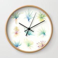 Epiphytes. Wall Clock