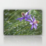 Laptop & iPad Skin featuring Meadow Dew by Vikki Salmela