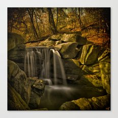 The Central Park Waterfall In Fall Canvas Print