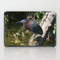 Green Heron iPad Case