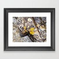 HeadlandRock26 Framed Art Print