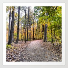 A Fall Day Art Print