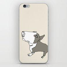 Terry iPhone & iPod Skin