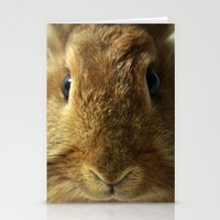 Little Rabbit. Stationery Cards