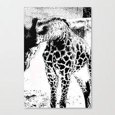 Black n White Giraffe Canvas Print