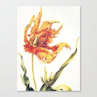 V. Vintage Flowers Botanical Print by Anna Maria Sibylla Merian - Parrot Tulip Canvas Print
