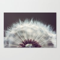 Germination Canvas Print