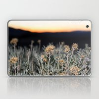 Sagebrush Laptop & iPad Skin