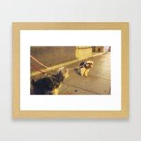 Cute Yorkshire lovers Framed Art Print