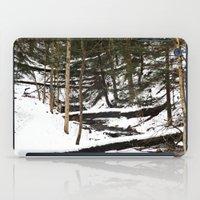 Downhill Stream  iPad Case