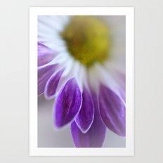 Daisy Leaf Macro Art Print