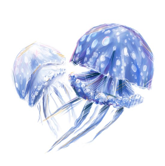 Jellyfish Sketch Art Print