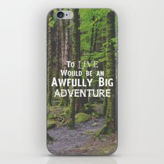 Peter Pan and Forrest Lands iPhone & iPod Skin