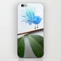 Blue Bird iPhone & iPod Skin