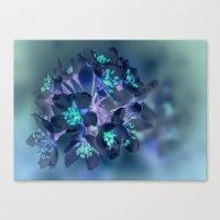 FLOWERS -Blue Blossoms Canvas Print