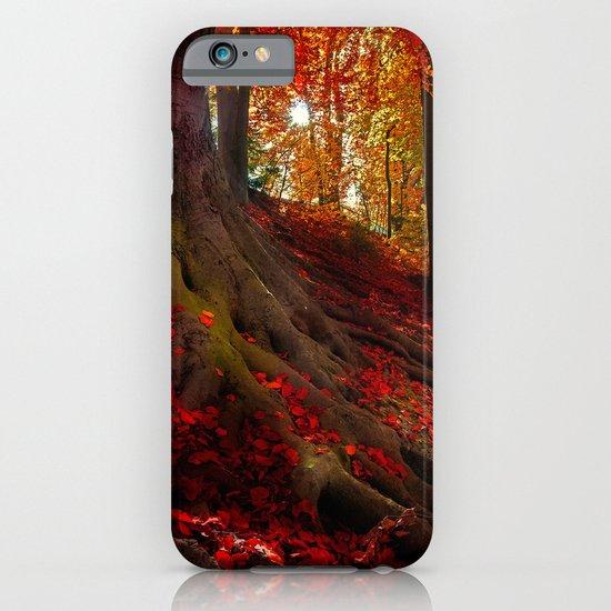Autumn light iPhone & iPod Case