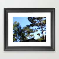 A Spider And Its Web Framed Art Print
