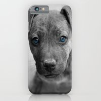 iPhone & iPod Case featuring Siouxsie by Jake Stanton