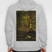 Padley Gorge Trail in Autumn Hoody