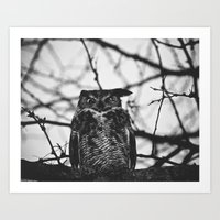 Disgruntled Owl (B&W)  Art Print