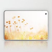 Summer Dry Laptop & iPad Skin
