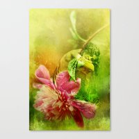 A Kiss Before Sunset Canvas Print