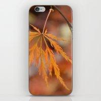 Adaptations iPhone & iPod Skin