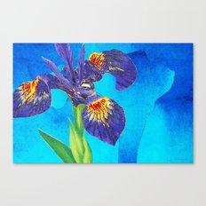 Wild Iris Art By Sharon … Canvas Print