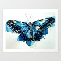 Mighty Morpho Butterfly Art Print